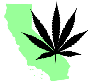 Mendocino cannabis appellations regulation